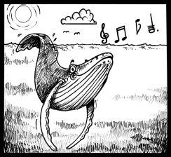 Humpback singing