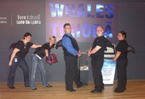 Dolphin Detectives at Te Papa