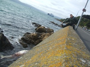 Anton pointing down to the washed up dead whale.