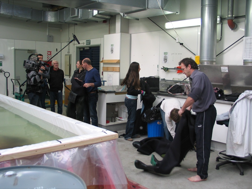Steve O'Shea, Mark Fenwick and others getting ready to go into the tank © Copyright Museum of New Zealand Te Papa Tongarewa, 2008