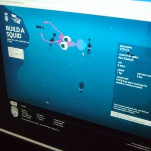 Build a Squid, at Te Papa's Colossal Squid exhibition