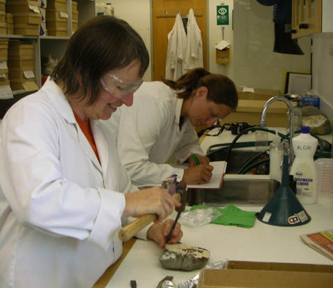 Scientists Tracy Farr (NIWA) and Louise Kregting (Otago) sampling corallines for chemical analysis