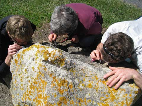 This rock was thoroughly inspected. Photo by Terry Evans. (c) Terry Evans, Auckland.