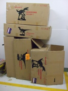 Dinosaur boxes in the corridor
