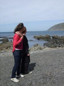 Watching killer whales near Owhiro Bay, Wellington South Coast