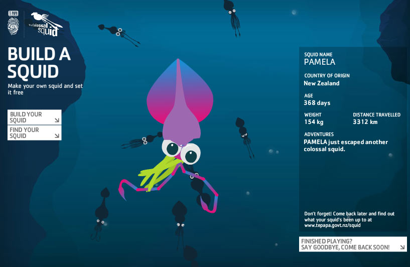 Pamela's one year old squid