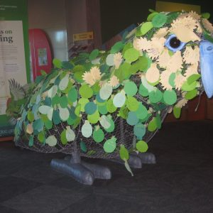 the Words on a Wing kakapo in NatureSpace | (c) Te Papa 2010