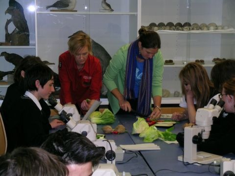 Botany Research Scientist Heidi Meudt, together with Senior Education Programme Developer Emma Best, helping the Hutt Valley High students with a dissection. Photo © Te Papa.