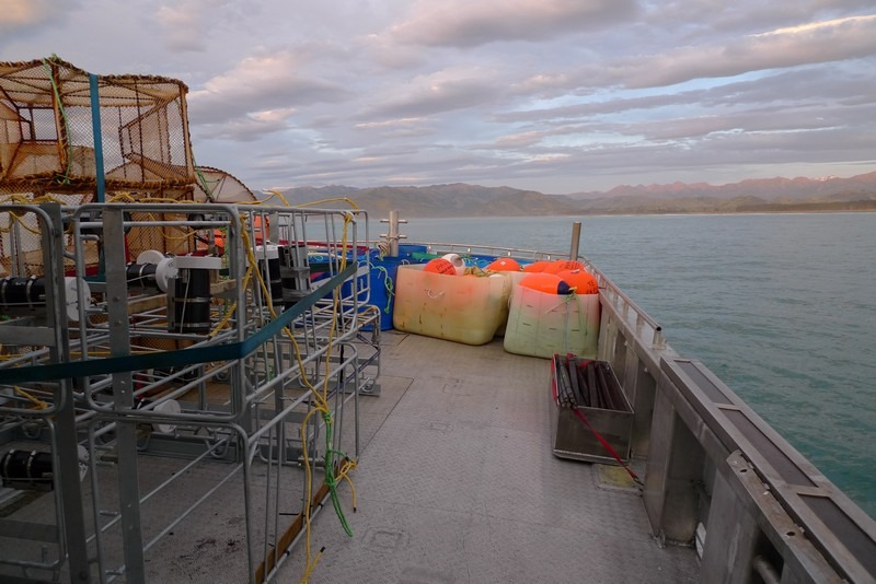 Early in the morning aboard the Star Keys, fully loaded with scientific gear (underwater video systems, fish traps and ropes). Te Papa, photograph by Vincent Zintzen.