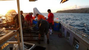 Scientists preparing video unit before its deployment at 1200 m depth. March 2010, Three Kings Islands. Te Papa, photograph by Vincent Zintzen