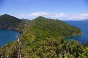1. Nukuwaiata (Inner Chetwode Island), with the outer Marlborough Sounds in the distance.