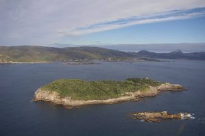 Kundy Island from the north-west, with southern Stewart Island beyond. Photo: Colin Miskelly.