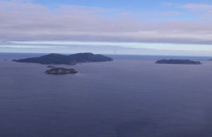 Muttonbird islands from the north. Taukihepa (Big South Cape Island) on the left, Putauhinu Island on the right, Kaimohu in the foreground.