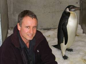 Colin Miskelly and the emperor penguin at Wellington Zoo on 18 July 2011, when the bird weighed a healthy 25 kg. Copyright Colin Miskelly, Te Papa