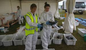 Karen and Lucy with oiled seabirds inside the pathology tent. Photo: Colin Miskelly, Te Papa