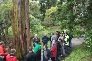 Part of our group gathers as Chris introduces a Eucalyptus species in the Wellington Botanical Gardens grounds. Photo: Antony Kusabs, Te Papa.