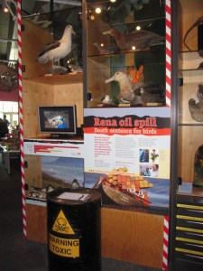 Display about the Rena oil spill in NatureSpace. Photograph by Raymond Thorley. Te Papa