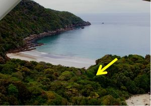 Location of Edgar Stead's 1934-35 campsite on Codfish Island (the end of Sealers Bay is visible at lower right). Photo: Colin Miskelly, Te Papa, December 2011