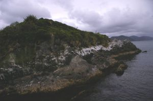 Trig Island, off the east coast of Codfish Island. Photo: Colin Miskelly, Te Papa, December 2011