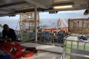 Working deck of the MV Tranuil Image with all the scientific equipment used to study fish diversity and behaviour.