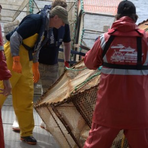 Scientists and crew prepare the deployment a fish trap to be sent in the deep canyons off Otago Peninsula