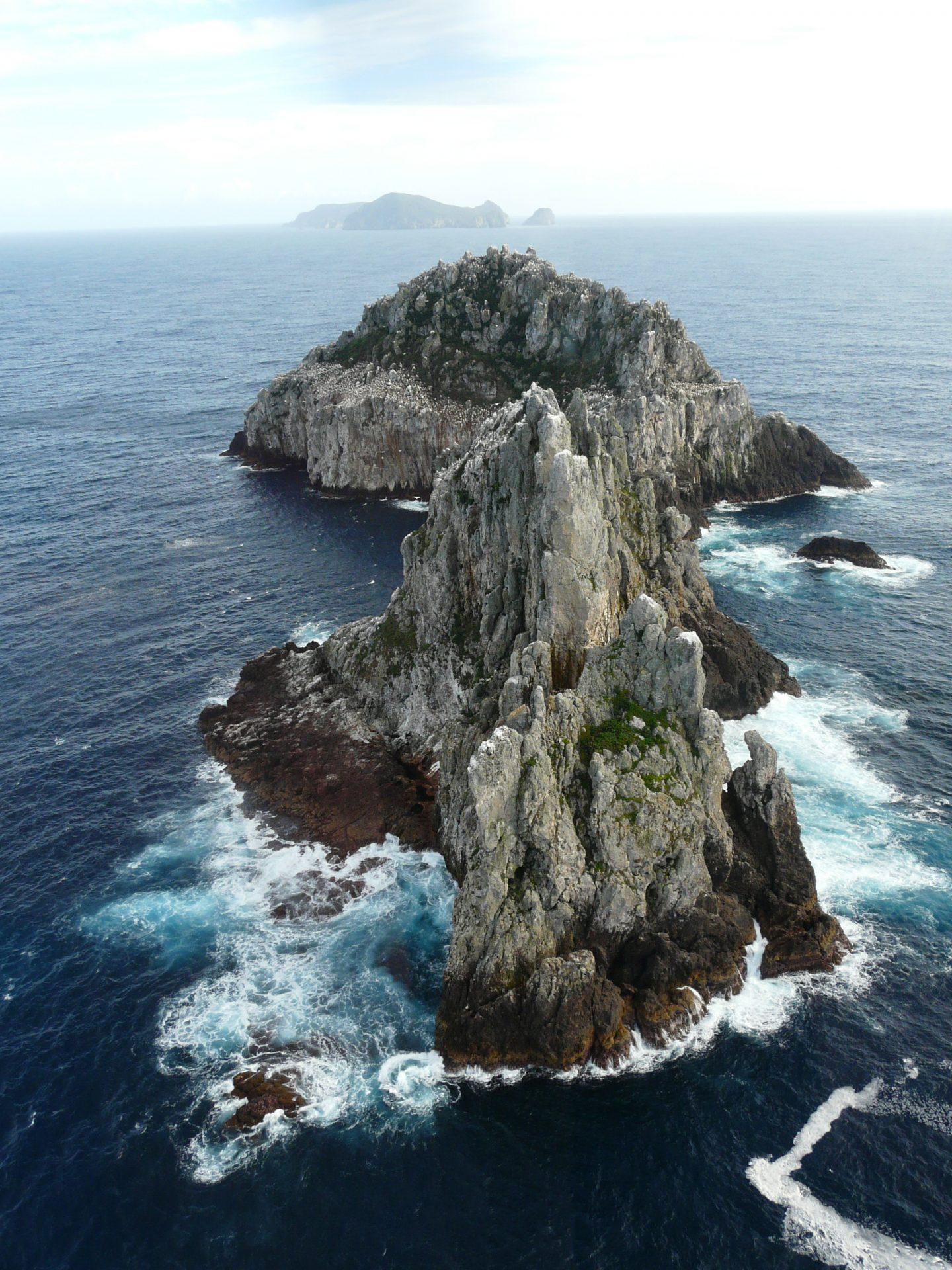 The Poor Knights Islands are the remnants of a volcanic island chain. Photo Alan Tennyson, Te Papa