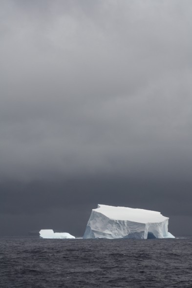 Iceberg. Photo Anton van Helden, copyright Te Papa.