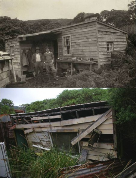 Top image - Edgar Stead and Sir John Hanham outside William Leader's hut on Solomon Island, November 1931 (2001.59.425, Macmillan Collection, Canterbury Museum). Bottom image - the remains of William Leader's hut in March 2012 (Image: Colin Miskelly, Te Papa)