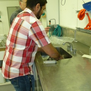 P1000102 right side up