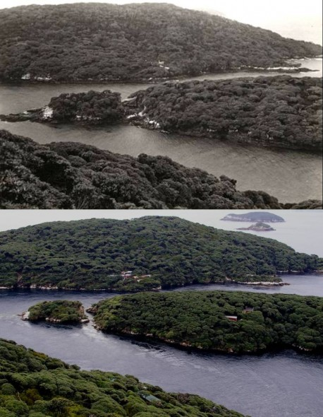 Rerewhakaupoko (Solomon Island) at rear, and Pukeweka Island viewed from the tops of Taukihepa (Big South Cape Island). Top image taken in 1931 (Edgar Stead photograph 2010.75.158, Canterbury Museum), lower image in 2012 (photo: Colin Miskelly, Te Papa). Stead and companions stayed in one of the cluster of huts near the south coast of Rerewhakaupoko.