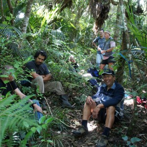 The Myosotis hunting team at lunch time.  Photo Jessie Prebble copyright Te Papa