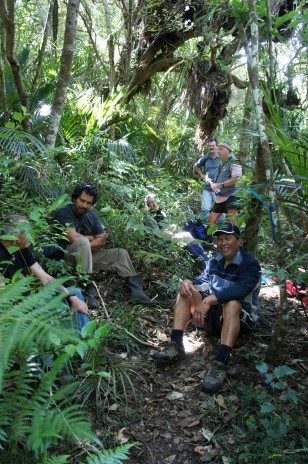 The The Myosotis hunting team at lunch time. Photo Jessie Prebble © Te Papa