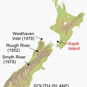 Map of the locations where three post-1940 little spotted kiwi were found (names in black type). Today's little spotted kiwi all derive from birds that survived on Kapiti Island (red type). Base map supplied by Geographx (http://www.geographx.co.nz/).