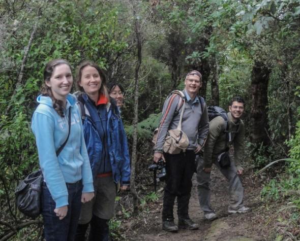 Orchid hunting in the Rimutaka (Emma Bodley, Anne Gaskett, Chau Phing Ong, Alastir Robertson & Carlos A. Lehnebach). Photo by Jonathan Frericks, © Jonathan Frericks.