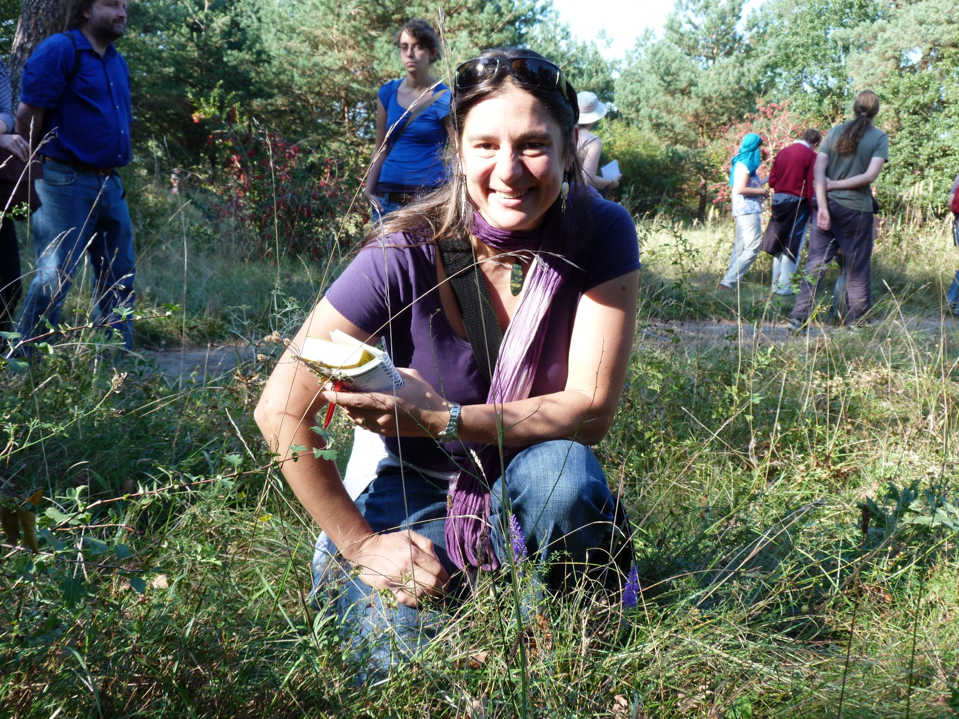 "Heidi Meudt on the botanical field trip to the ""Mainzer Sand"", at the ""Biodiversity and Evolutionary Biology"" meeting, the 21st International Symposium of the German Botanical Society (DBG) , Sept. 2012. I am kneeling just behind the European plant species Veronica spicata. Photo by Aaron Liston."