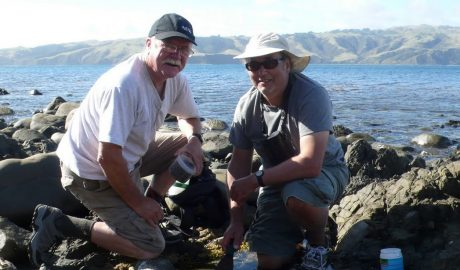 Graham Bird (right) and Rick Webber (Curator of Crustacea at Te Papa) collecting tanaids and other small invertebrates from gravel and algae in tide pools on Mana Island during the 2011 Mana Marine Bioblitz. (© Graham Bird).