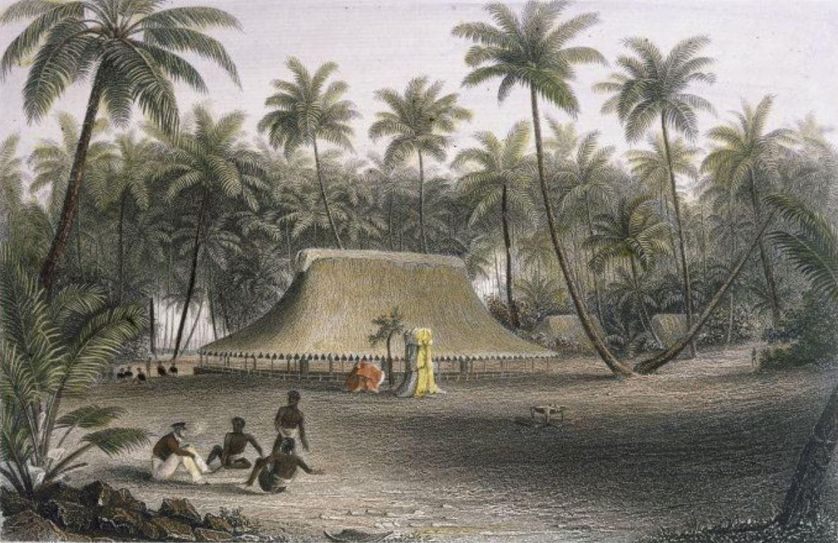 A watercolour painting of a dwelling surrounded by coconut trees