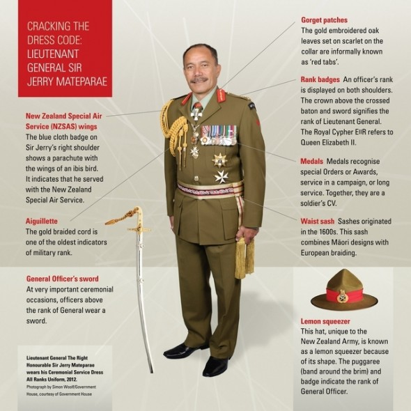 Graphic for Sir Jerry's uniform. Te Papa 2012.