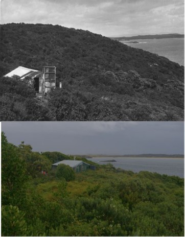 Muttonbirding hut in Ruapuke Island, with Ruapuke Island in the background. Upper image taken by Edgar Stead in 1941 (courtesy of Canterbury Museum 2001_59_319); lower image by Colin Miskelly