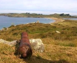 Henrietta Bay on the south coast of Ruapuke Island. The cannon is claimed to have come from the Elizabeth Henrietta. Photo: Colin Miskelly