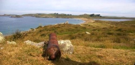 Henrietta Bay on the south coast of Ruapuke Island. The cannon is claimed to have come from the Elizabeth Henrietta. Image: Colin Miskelly