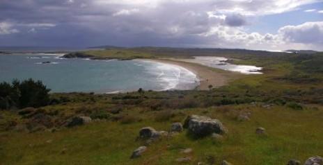 Lagoon Bay on the west coast of Ruapuke Island. Image: Colin Miskelly