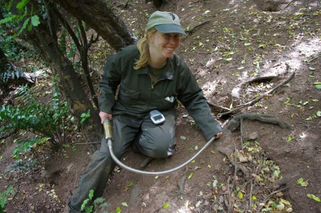Te Papa researcher Dr Sarah Jamieson using a burrowscope on Titi Island. Image: Colin Miskelly, Te Papa