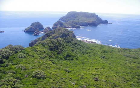 The Poor Knights Islands looking north, with Aorangi Island in the foreground and Tawhiti Rahi beyond. Image: Colin Miskelly, Te Papa