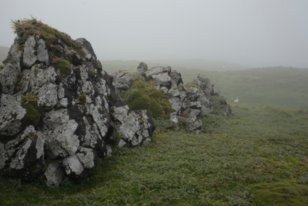 Volcanic rock forms and misty weather at Pointe Basse. Photo: Susan Waugh, Courtesy of Susan Waugh.