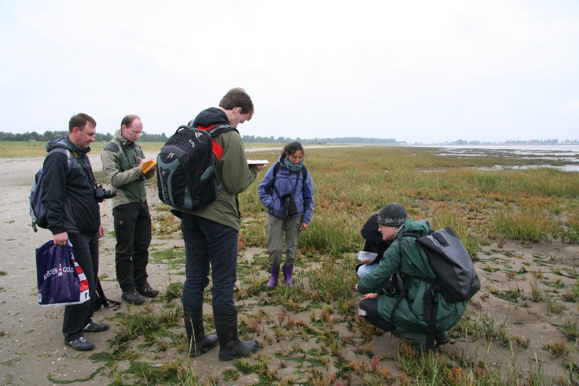 At the Wattenmeer (Wadden Sea) along the North Sea coast in Germany in May 2013. From left to right Petr Kosachev, Eike Mayland-Quellhorst, Dirk Albach, Carolina García, Simon Pfanzelt. Photo by Heidi Meudt.