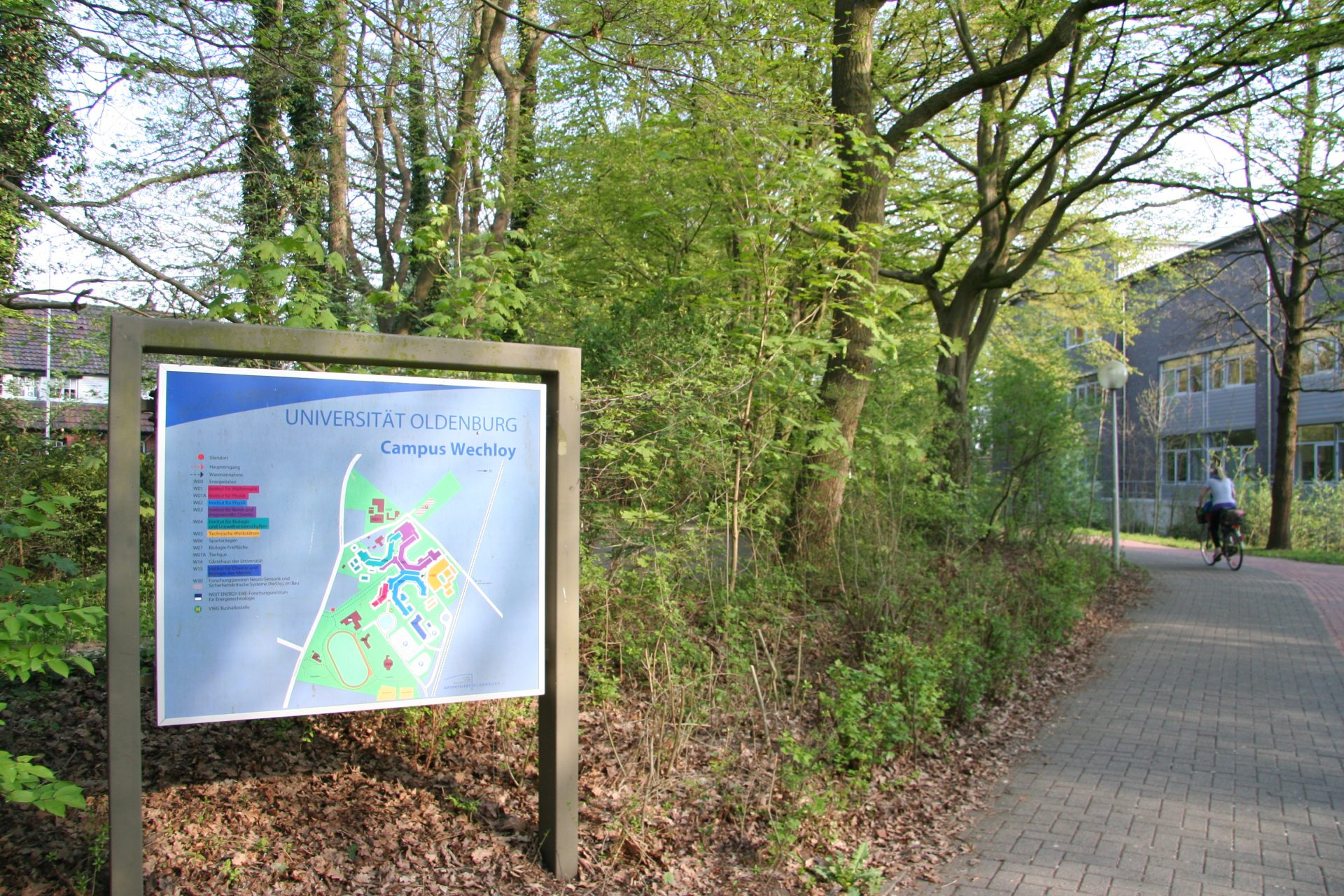 After cycling through the beautiful tunnel of oak trees (did I mention I get to do this every day?), I arrive at the science campus of the University of Oldenburg, and turn right at this sign to get to my office. Photo by Heidi Meudt.
