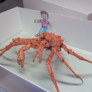 Flat Stanley and a king crab in Te Papa's marine invertebrate collection. Photographer: Scott Ogilvie © Te Papa