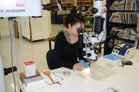 Liisi Hakala treating the verso of a Monrad print. Photo by Jennifer Cauchi © Te Papa.