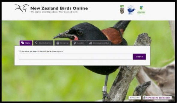 Homepage screenshot from New Zealand Birds Online